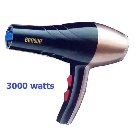 epaggelmatiko sesouar mallion 3000W braoua br-8835