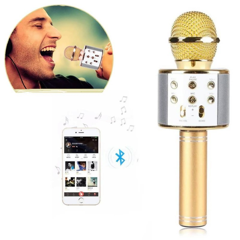 wster microphone main
