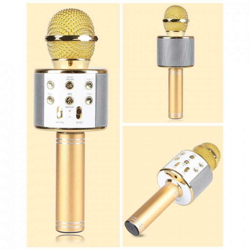 wster microphone main 2