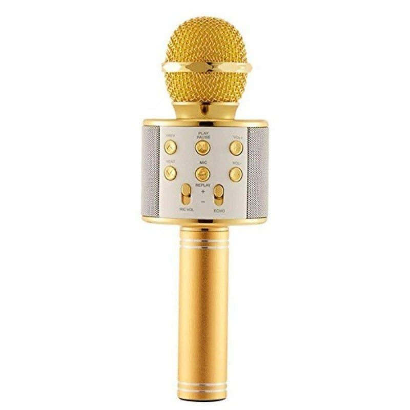 wster microphone main 3
