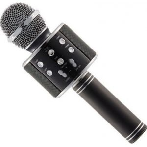 wster microphone main 5